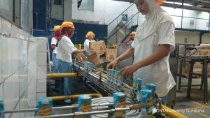 """BATAM. PT Kalbe Farma Tbk (KLBF) akan menggenjot jumlah produksi dan penjualan minuman dalam kemasan bermerek di tahun ini. Langkah ini dilakukan oleh Kalbe untuk mengimbangi penurunan margin produk farmasi. """"Kami optimistis pertumbuhan pasar Hydro Coco akan meningkat 40% setiap tahun,"""" ujar Ronald Unadi, Head of Marketing & Sales RTD KLBF. Saat ini produksi Hydro Coco mencapai 55 juta kemasan per tahun. Angka ini setara dengan 13,75 juta ton air kelapa. Ini artinya pada tahun ini penjualan Hydro Coco bisa meningkat 72 juta kemasan. Foto: Avanty Nurdiana"""
